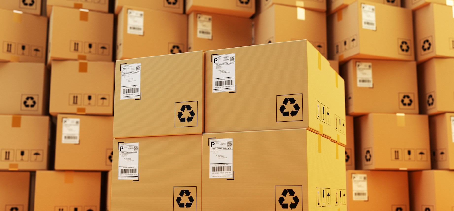 Supply Chain & Process